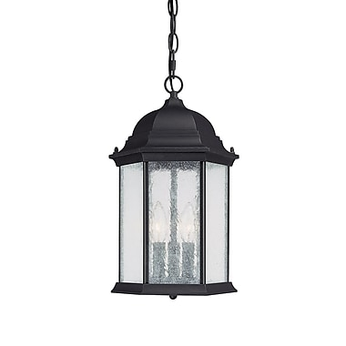 Darby Home Co Hearne 3-Light Outdoor Hanging Lantern; Black