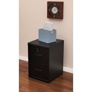 Charlton Home Berkhead 2 Drawer File Cabinet; Black