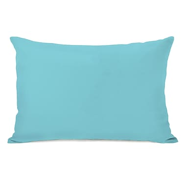 Charlton Home Benbrook Solid Throw Pillow; Pale Aqua