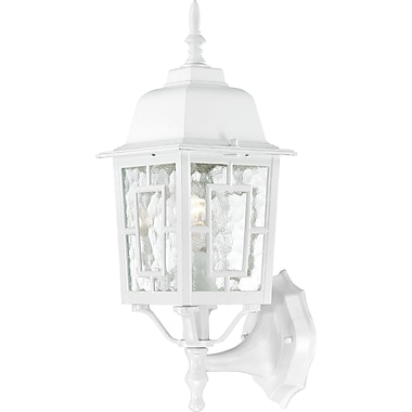 Charlton Home Timmons 1-Light Outdoor Wall Lantern; White