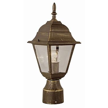 Charlton Home Fremont 1-Light Lantern Head; Rust