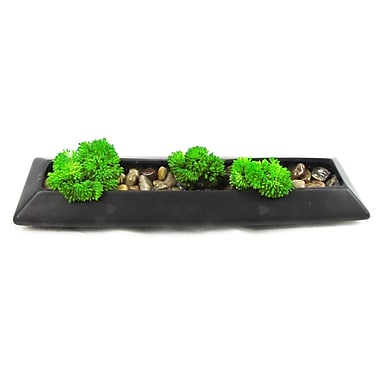 Creative Branch Moss Faux Grass in Planter