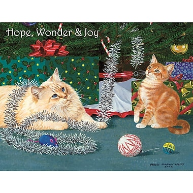 Lang Kitten Christmas Boxed Christmas Cards Full Colour Artwork Inside & Out