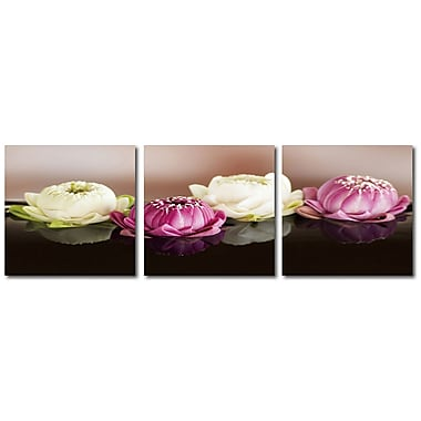 Cathay Importers Lily Pad Flowers Triptych Art, 24