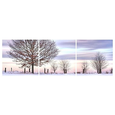 Cathay Importers Winter Trees Triptych Art, 24