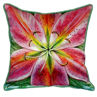 Betsy Drake Interiors Lily Indoor/Outdoor Throw Pillow; Small