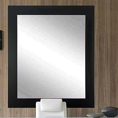 Commercial Value Lobby Design Wall Mirror; Black