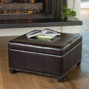 Alcott Hill Lockington Storage Ottoman