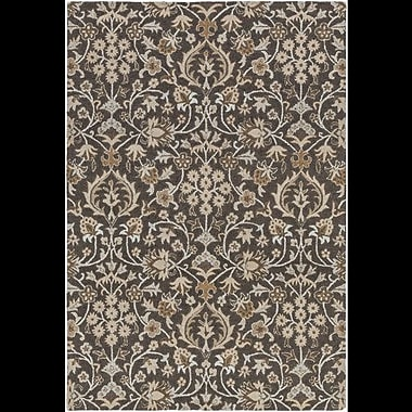 Alcott Hill Pottershill Black/Light Gray Area Rug; 9' x 13'