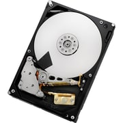 "HGST Ultrastar 7K3000 HUS723020ALS640 2 TB 3.5"" Internal Hard Drive"