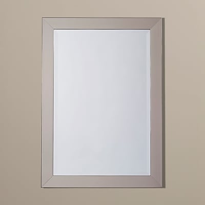 Alcott Hill Stainless Rectangle Wall Mirror