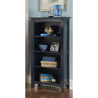 Alcott Hill Bel Air 48'' Standard Bookcase; Charcoal Gray
