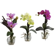 Alcott Hill Mixed Orchid w/ Cube Flowers (Set of 3); Lavender/Creamy Yellow/Purple