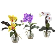 Alcott Hill Mixed Orchid w/ Cube Flowers (Set of 3); Yellow/Purple/White