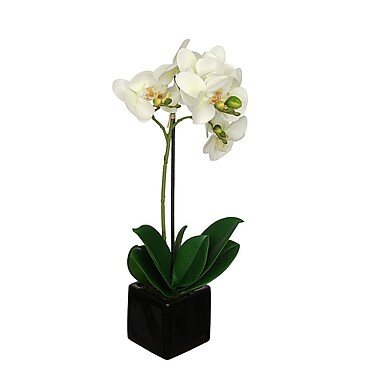 House of Silk Flowers Artificial Baby Orchid Flowers in Pot; Pearl White
