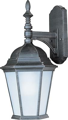 Alcott Hill Listermann 1-Light Outdoor Wall Lantern; Rust Patina