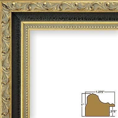 Astoria Grand 1.28'' Wide Ornate Picture Frame; 16'' x 22''