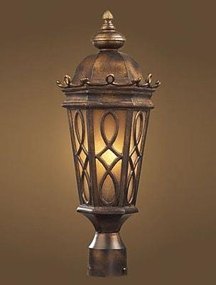 Astoria Grand Boarstall Outdoor 2-Light Lantern Head