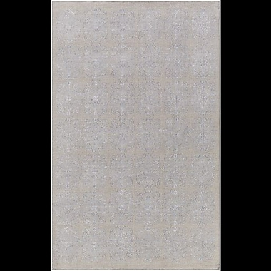 Astoria Grand Barret Hand-Woven Gray Area Rug; 6' x 9'