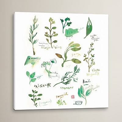 August Grove Herbs Graphic Art on Wrapped Canvas; 18'' H x 18'' W x 0.75'' D