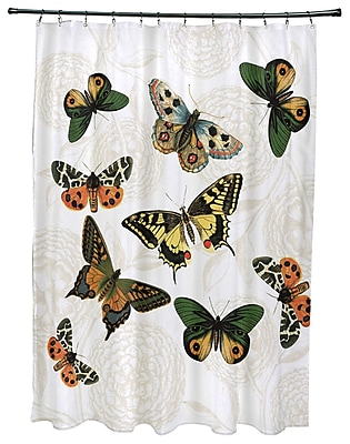 August Grove Swan Valley Antique Butterflies Shower Curtain; White