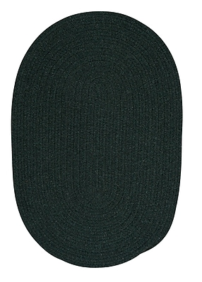 August Grove Navarrette Green Area Rug; Oval 4' x 6'