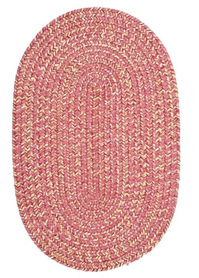 August Grove Annet Camerum Area Rug; Oval 2' x 3'