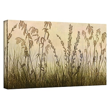 August Grove Amber Photographic Print on Wrapped Canvas; 12'' H x 24'' W x 2'' D
