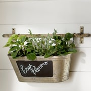 August Grove Stella Wall Planter; Large