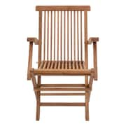 Bay Isle Home Kazafana Folding Arm Chair (Set of 2)