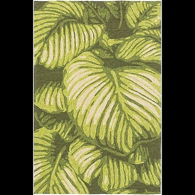 Bay Isle Home Passionflower Hand-Tufted Indoor/Outdoor Green Area Rug; 9' x 12'