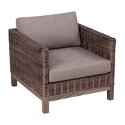 Bay Isle Home Cairo Modern Arm Chair