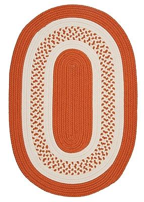 Bay Isle Home Rockport Orange Indoor/Outdoor Rug; Oval Runner 2' x 12'