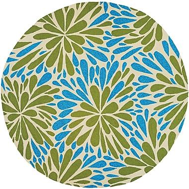Bay Isle Home Wallingford Summer Siesta Hand-Woven Blue/Green Indoor/Outdoor Area Rug; 3'6'' x 5'6''