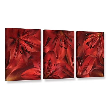 Bay Isle Home Lily Landscape 3 Piece Graphic Art on Wrapped Canvas Set; 36'' H x 72'' W x 2'' D