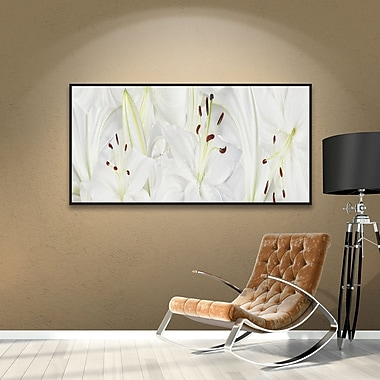 Bay Isle Home Lily Landscape Framed Photographic Print on Wrapped Canvas; 24'' H x 48'' W