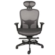 Brayden Studio Salls Mesh Desk Chair
