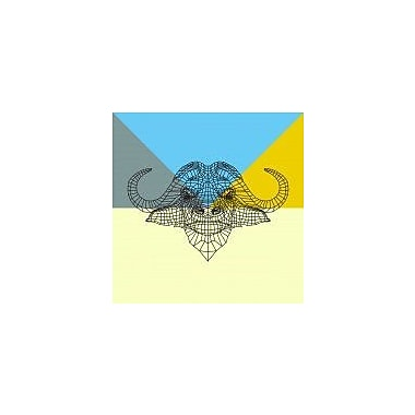 Naxart 'Party Buffalo Mesh' Graphic Art Print on Canvas; 30'' H x 30'' W x 1.5'' D