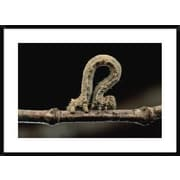 Global Gallery 'Creosotebush Caterpillar Inching Along Twig' Framed Photographic Print