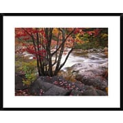 'The Swift River, White Mountains National Forest, New Hampshire' Framed Photographic Print