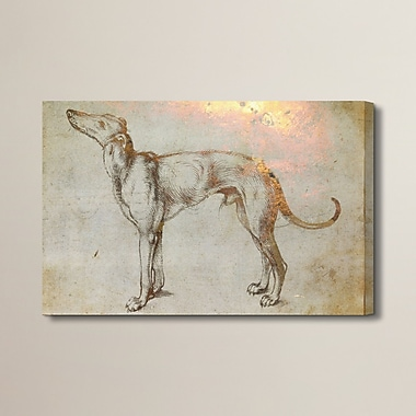 Brayden Studio 'Galgo' Painting Print on Wrapped Canvas; 40'' H x 60'' W x 2'' D