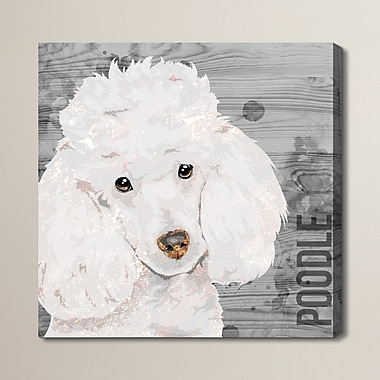 Brayden Studio 'Love My Poodle' Graphic Art on Wrapped Canvas; 50'' H x 50'' W x 2'' D