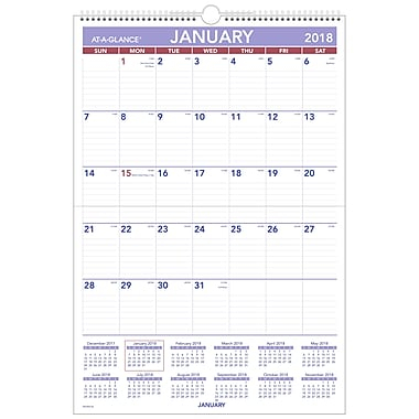 2018 AT-A-GLANCE® Monthly Wall Calendar, Erasable, January 2018-December 2018, 15-1/2