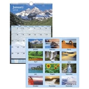 "2018 AT-A-GLANCE® Scenic Wall Calendar, 12 Months, January Start, 12"" x 17"", White (DMW200-28-18)"