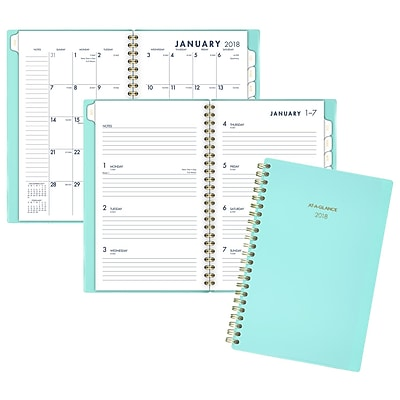 2018 AT-A-GLANCE® Color Bar Weekly/Monthly Planner, 12 Months, January Start, 4 7/8