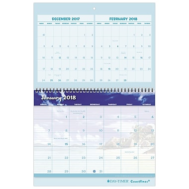 2018 Day-Timer® Coastlines® Three-Month Wall Calendar, 12 Months, January Start, 11