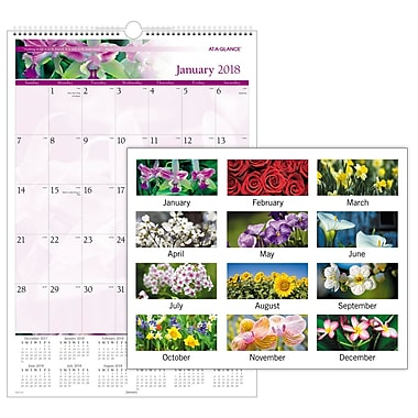 2018 AT-A-GLANCE® Monthly Wall Calendar, January 2018-December 2018, 15-1/2