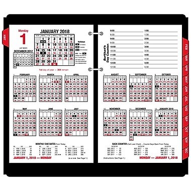 2018 AT-A-GLANCE® Burkhart's Day Counter Daily Desk Calendar Refill, 12 Months, January Start, 4 1/2