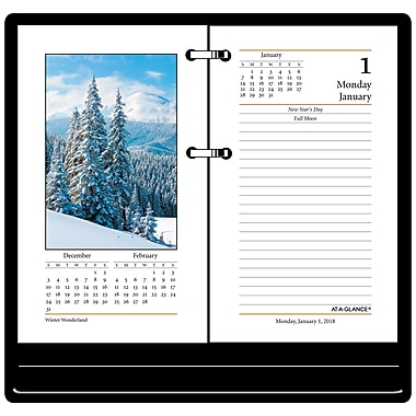 2018 AT-A-GLANCE® Daily Photographic Loose-Leaf Desk Calendar Refill, 12 Months, January Start, 3 1/2