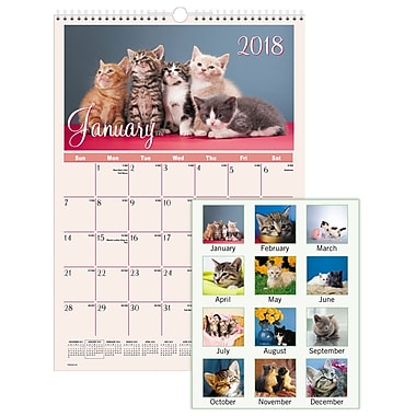 2018 AT-A-GLANCE® Kittens Monthly Wall Calendar, 12 Months, January Start, 12
